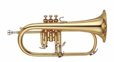 西洋樂器圖片