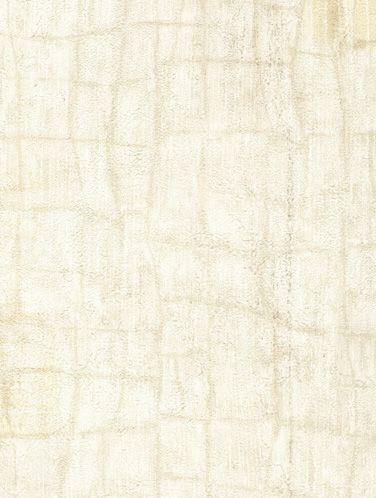 纹理背景壁饰贴图-257963dmax材质