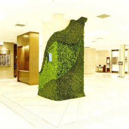 植物艺术812066