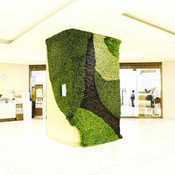 植物藝術12067