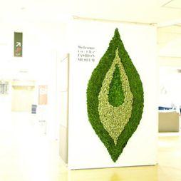 植物藝術812070