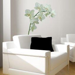 休闲区纯白沙发图片