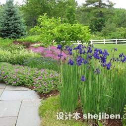 别墅花园景观设计图片库欣赏