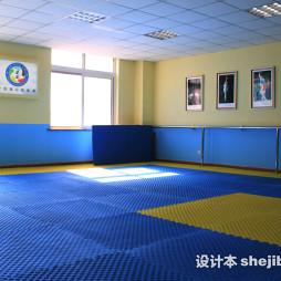 跆拳道地垫效果图集欣赏