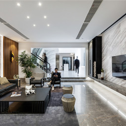 450㎡墅式客厅设计图片