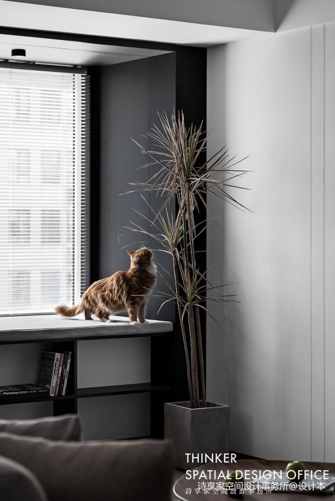 慕白 115㎡的一居室,两人一猫的小