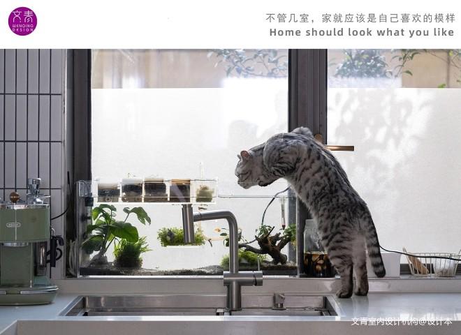 当遇到猫奴家做设计,只做一室?_16