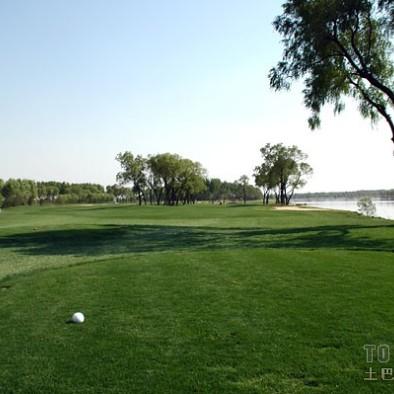 高尔夫场地