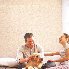 布吕克纳植绒双面无纺布墙纸沙发客厅楼梯玄关卧室壁纸AM01 正品