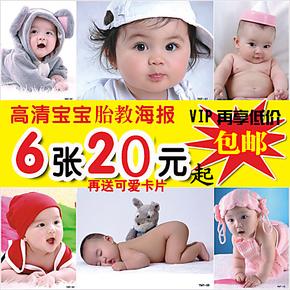 可爱婴儿画报BB相片照片宝宝图片早教胎教海报墙贴图画像挂图包邮