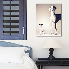 狗狗摄影 可爱狗狗现代家居室内装饰挂画 卧室帆布画无框墙壁画