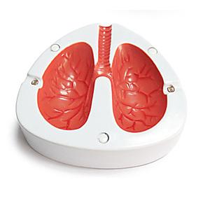 戒烟好帮手 会咳嗽的烟灰缸 声控烟灰缸 咳嗽肺部烟灰缸  二色选
