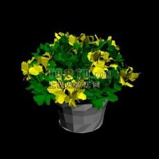 室内盆栽植物3d模型下载