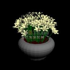 盆栽花3d模型下载