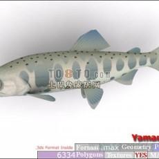 鱼3d模型下载
