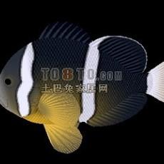 鲤鱼3d模型下载