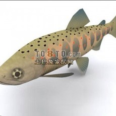 动物-鱼3d模型下载