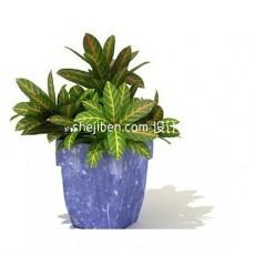 室内盆景植物3d模型下载