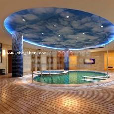 游泳池天花板3d模型下载