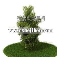 室外植物3d模型下载