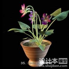 室外盆栽3d模型下载