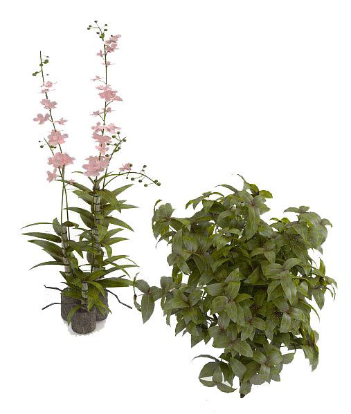 室内盆栽花艺3d模型下载
