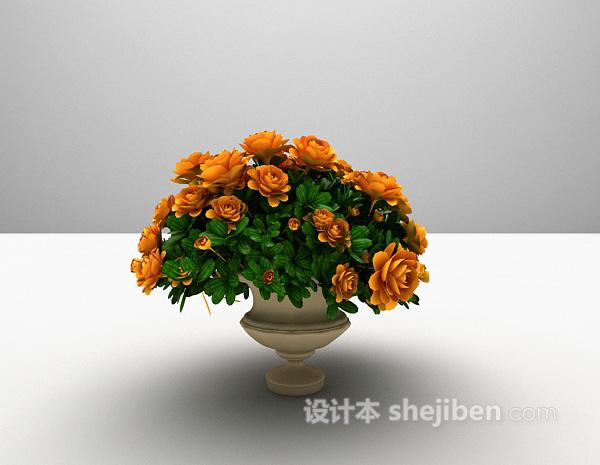 植物花卉3d模型下载