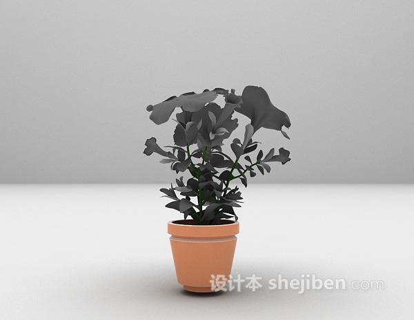 鲜花盆栽3d模型下载