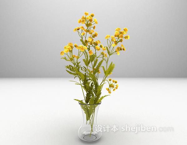 小菊花3d模型下载