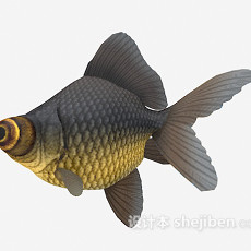 大眼鱼3d模型下载