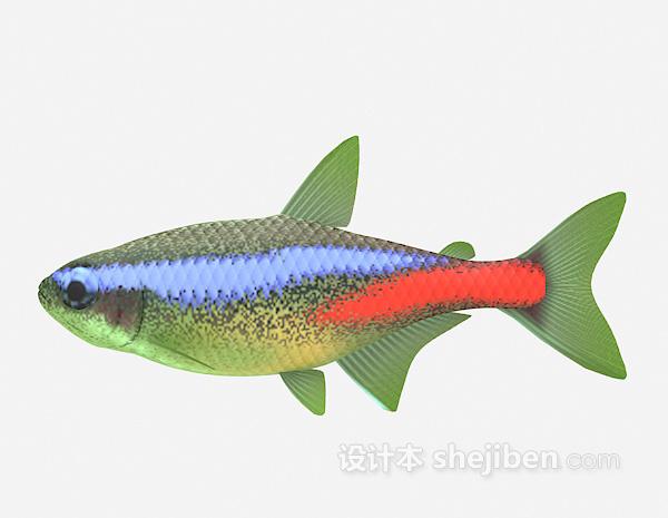 彩色鱼3d模型下载