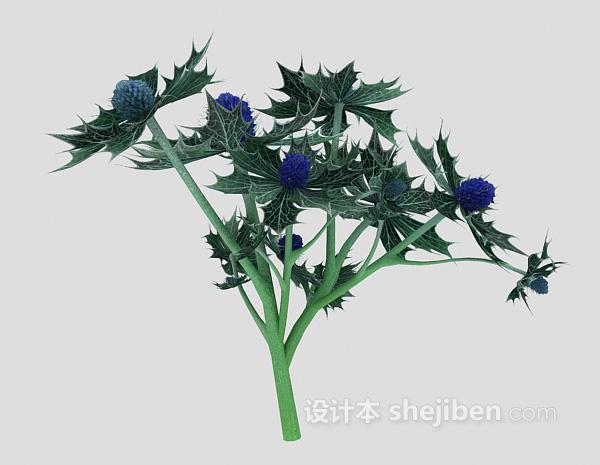 室外大叶植物3d模型下载