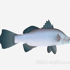 鱼的3d模型下载