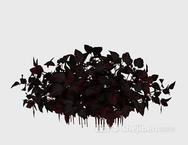 紫色植物3d植物模型下载