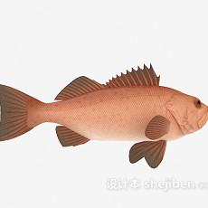 海鱼3d模型下载