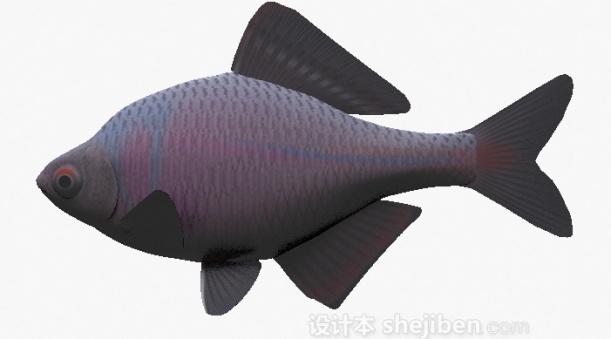 紫色鱼模型3d模型下载