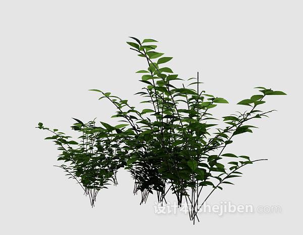 室外绿色植物3d模型下载