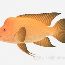 黄色鱼3d模型下载