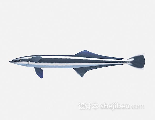 大鱼模型3d模型下载