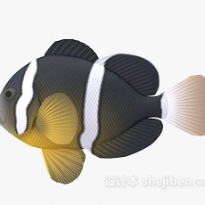 条纹鱼3d模型下载
