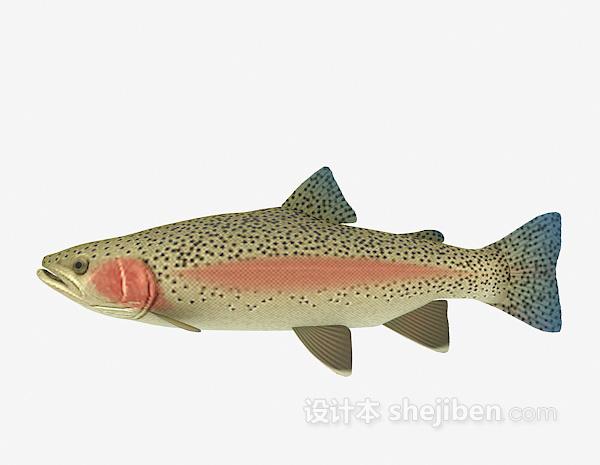 鱼模型3d模型下载