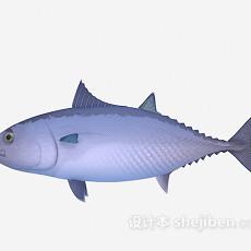小胖鱼3d模型下载