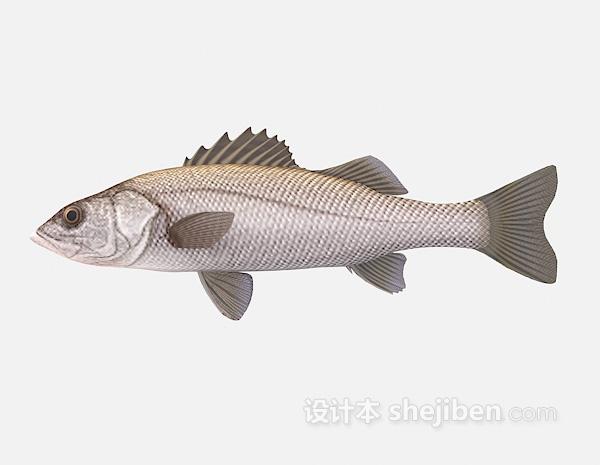 小鱼模型3d模型下载