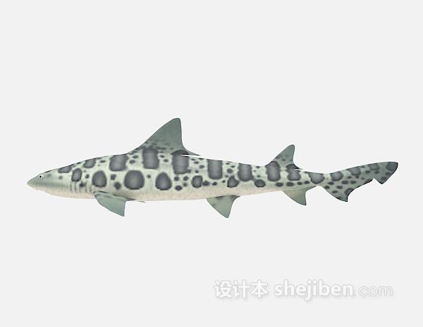 大鱼的3d模型下载