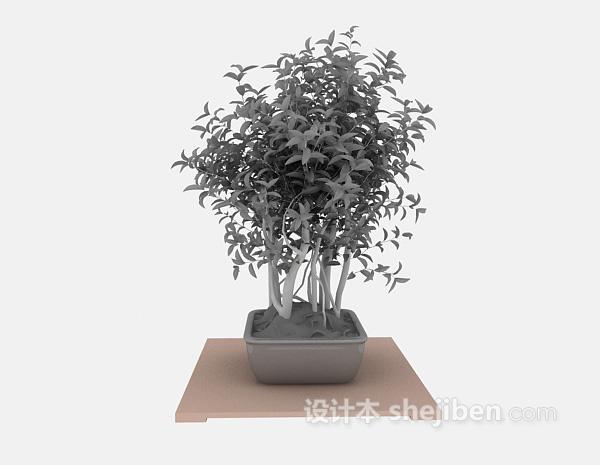 花卉植物3d模型下载
