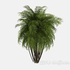尖叶树3d模型下载