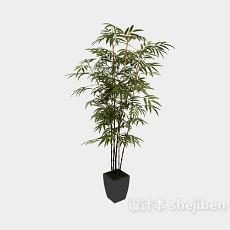 装饰盆栽3d模型下载