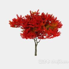 景观树3d模型下载