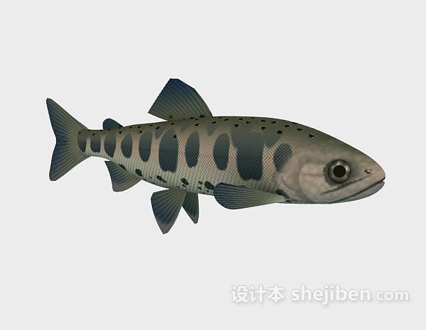 蓝色鱼模型3d模型下载