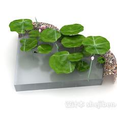 池塘荷花3d模型下载